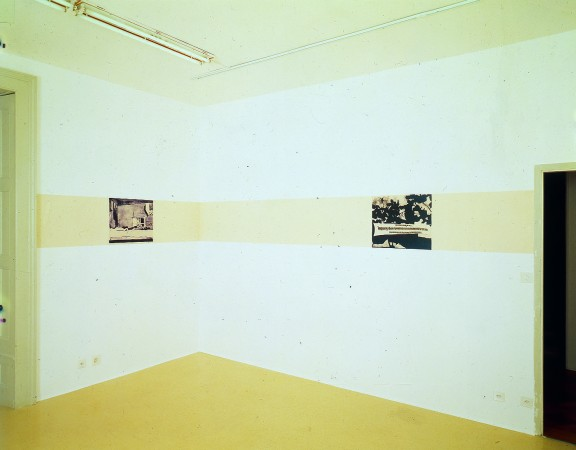 Luc Tuymans, view of the exhibition, 1995